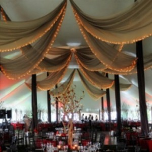 Dramatic Draping Design